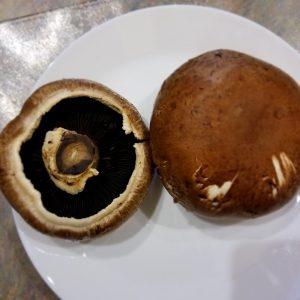 Portobello Mushroom
