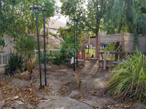 Wilted Garden