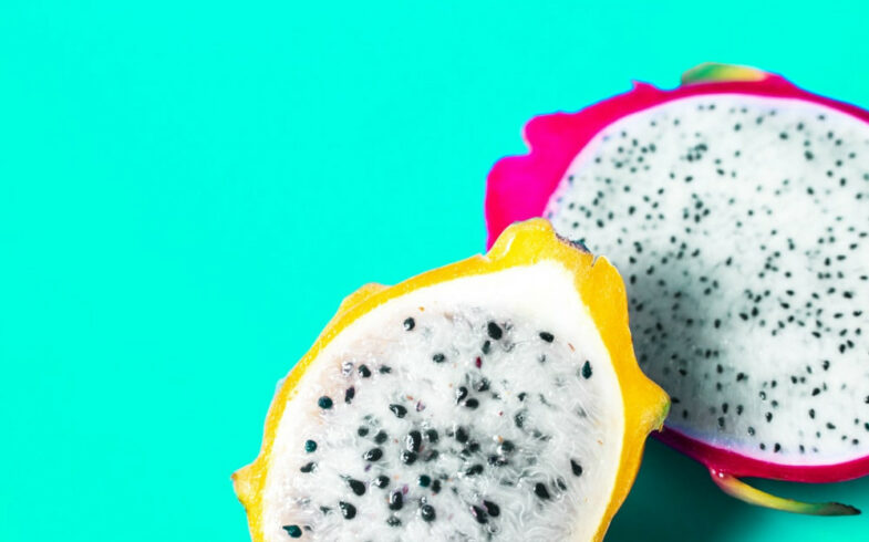 How To Grow Dragon Fruit From Cutting